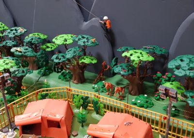 Dino Insel (43)