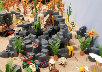 Dino Insel (47)