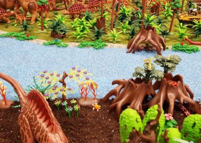Dino Insel (50)