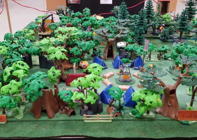 Playmopost et la forêt d'Ardenne (14)